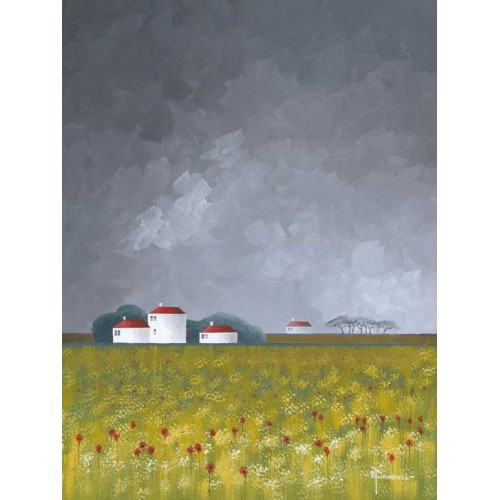 Dark Sky Poppy Fields - Bob Turnbull Image