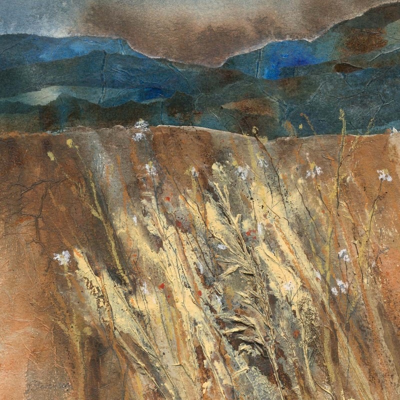 Seeded Grasses - Jackie Stevenson Image
